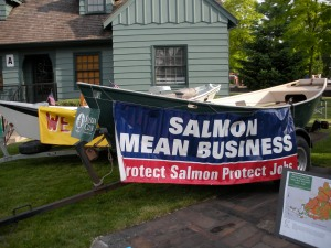 Salmon DO mean business. A fact the Board forgot