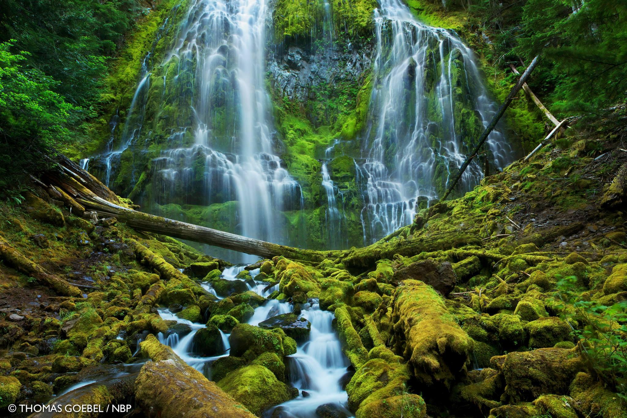 Oregon Sierra Club Blog