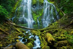 Proxy Falls Three Sisters Wilderness, Oregon, USA