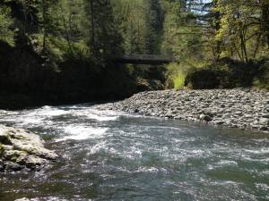 The Footbridge Trailhead at milepost 20 is the culmination of the Wilson River Trail and the beginning of some great spots for fishing. Though the water will be low during summer months, a patient angler can pursue cutthroat trout or hatchery summer steelhead, though catch-and-release fishing can stress out native fish in low water.