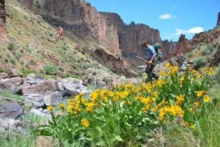 West Little Owyhee River Canyon; Photo Credit: Tim Neville