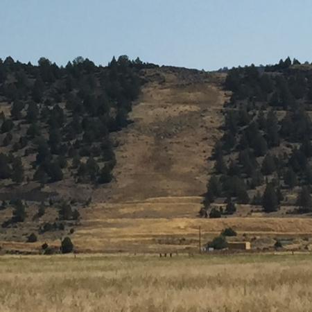 Ruby Pipeline Clearcut-Klamath County
