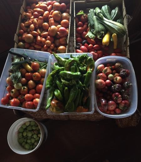 Nature's nurtured bounty in Southern Oregon-September 19 2017